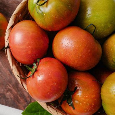 대저토마토 고품질 2.5kg